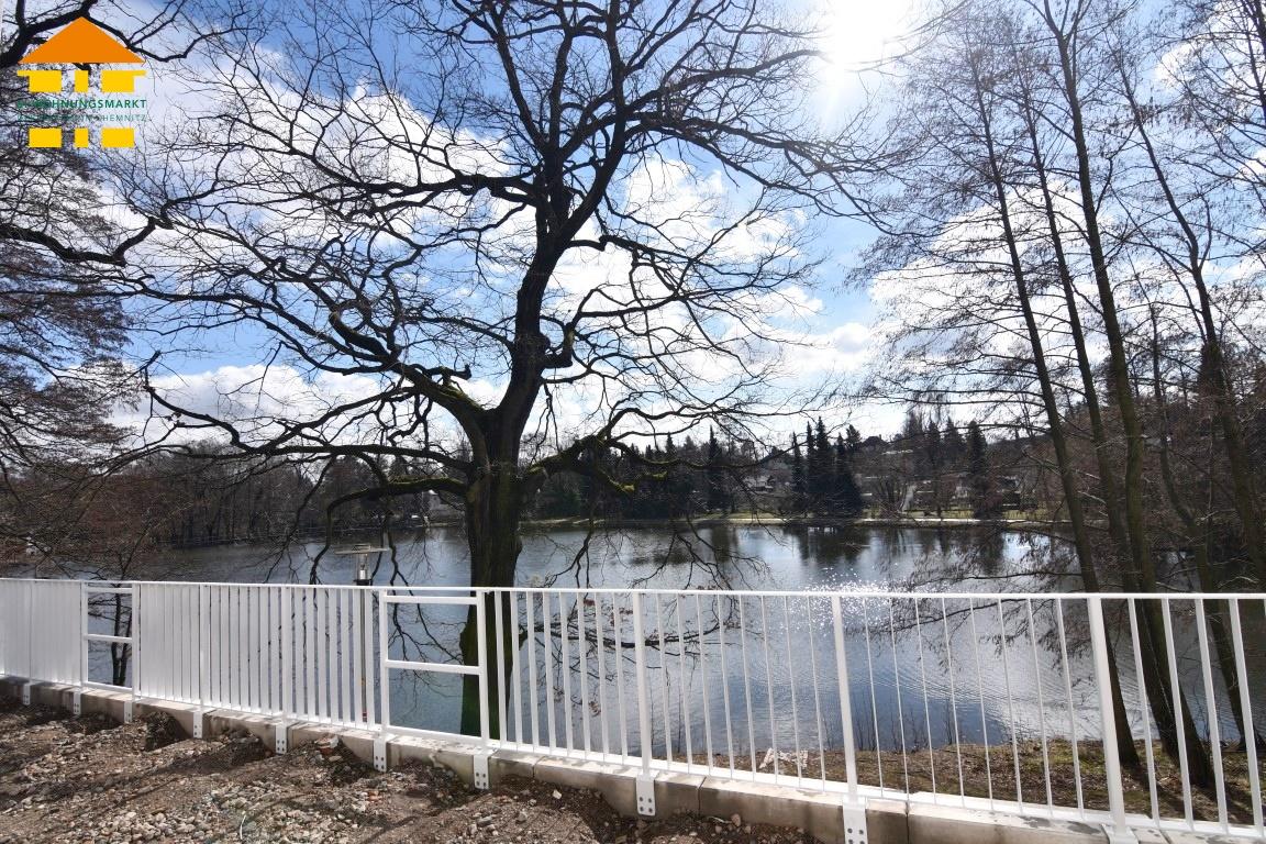 Blick auf Teich